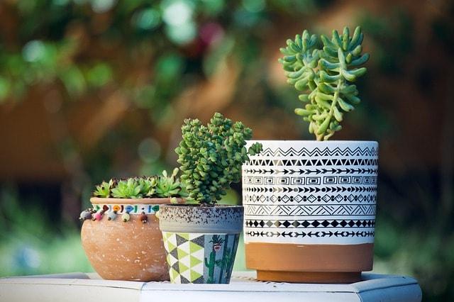 Schöne und wohnliche Garten-Ideen